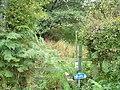 Footpath to Langdale End - geograph.org.uk - 1506964.jpg