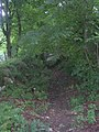 Footpath to Leeds Road from Old Pool Bank - geograph.org.uk - 1407724.jpg