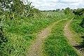 Footpath to Lower Burgate - geograph.org.uk - 1524951.jpg
