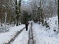 Footpath to Pant Du - geograph.org.uk - 1811419.jpg
