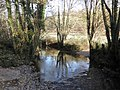 Ford, on the River Dart, near Rashleighhayes Farm - geograph.org.uk - 1625598.jpg