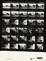 Ford B2139 NLGRF photo contact sheet (1976-10-26)(Gerald Ford Library).jpg