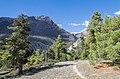 Forest path - Annapurna Circuit, Nepal - panoramio.jpg
