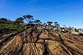 Formação Rochosa do Parque Nacional do Caparaó.jpg