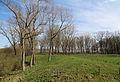 Fort van Beieren R19.jpg