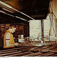 Fotothek df n-17 0000080 Facharbeiter für Anlagentechnik.jpg