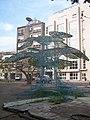 Fréderic Keiff, L'Arbre à Palabres, Installation 2007 36.jpg