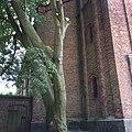 Fragment frontu kościoła ewangelickiego w Pogorzeli.jpg