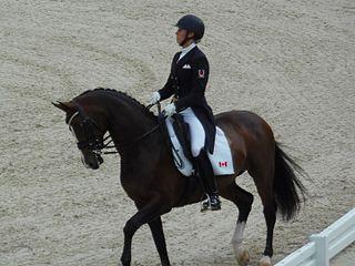 Megan Lane dressage rider