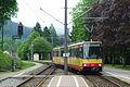 Frauenalb-S-Bahn.jpg