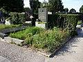 Friedhof Groß-Jedlersdorf Biodiversität sl4.jpg