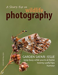 Front cover of A Sharp Eye on wildlife photography - Issue One.jpg