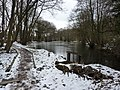 Frozen mill pond - geograph.org.uk - 1722416.jpg