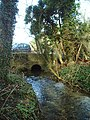 Gallos Brook - geograph.org.uk - 345157.jpg