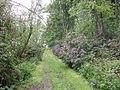 Galloway House gardens, Garlieston - geograph.org.uk - 14760.jpg