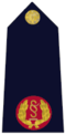 Rank insignia of Garda Assistant Commissioner