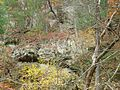 Gfp-wisconsin-governor-dodge-state-park-rock-formation.jpg