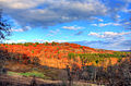Gfp-wisconsin-wildcat-mountain-state-park-sky-and-hills.jpg