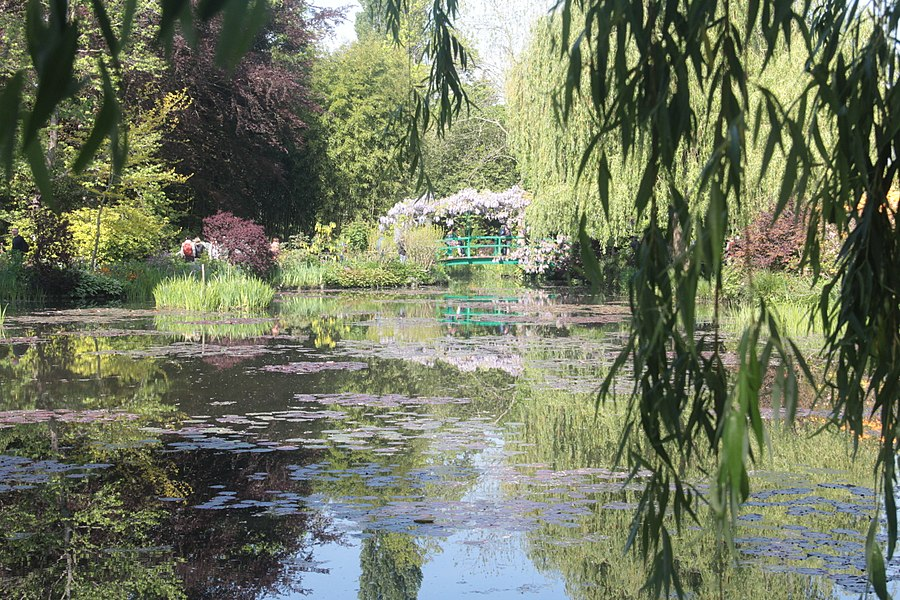 Water lilies in Monet Garden in Giverny