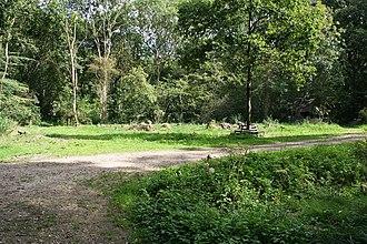 Retford - Treswell Woods SSI