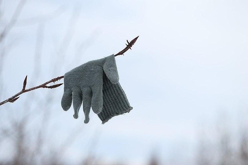 Glove-686782 1920.jpg