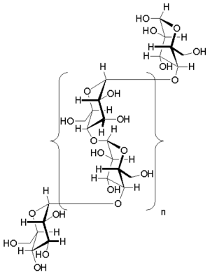 Glycogen - 1,4-α-glycosidic linkages in the glycogen oligomer