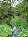 Goit, Kirkstall - geograph.org.uk - 164589.jpg