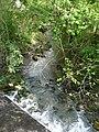 Gouyne (affl Dordogne) D13 aval.jpg