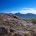 Gran Canaria, Caldera de Tejeda, view over smooth rocks with dead mosses.jpg
