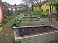 Grapes Hill Community Garden 1, Norwich.JPG