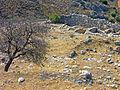 Greece-0399 (2215910172).jpg