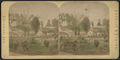 Greenwood Cemetery, New York, from Robert N. Dennis collection of stereoscopic views.png