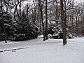 Großer Garten, Dresden in winter (1100).jpg