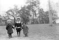Gruppbild av tre barnbarn Erik Rydbeck, Gösta Rydbeck och Halvar Ihre i Anneberg - Nordiska Museet - NMA.0056936.jpg