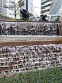HK 中環 Central 交易廣場 Exchange Square sculpture Water Buffalo waterfall January 2020 SS2 02.jpg