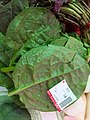 HK food ingredient 潺菜 green leaves vegetable 佳寶食品 Kai Bo Food Supermarket May 2020 SS2 01.jpg