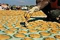 Haitian Dirt Biscuits.jpg