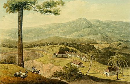Hakewill, A Picturesque Tour of the Island of Jamaica, Plate 07.jpg