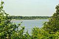 Hamburg, Naturschutzgebiet NSG LÜ 049 Neßsand 01.jpg