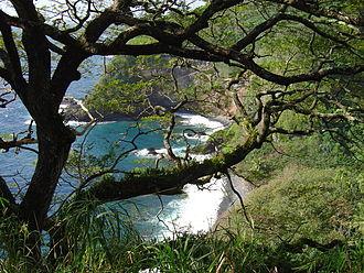 Hana Highway - Coastal view along the highway
