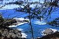 Hanalei, Kauai, Hawaii - panoramio (6).jpg