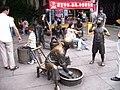 Hangzhou-exotic bazaar-just cannot talk - panoramio.jpg