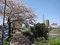 Hara Nagoya 0931.JPG
