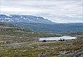 Hardangervidda plateau - Norway - panoramio.jpg