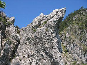Main dolomite - Main dolomite of the Langbathscholle, Kaltenbachwildnis, Austria