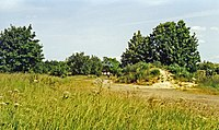 Haverhill station site geograph-3619342-by-Ben-Brooksbank.jpg