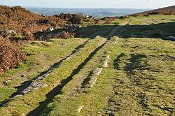Haytor Granite Tramway near Haytor (8692).jpg