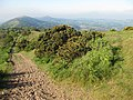 Hazy morning on the Malvern Hills - geograph.org.uk - 1337017.jpg