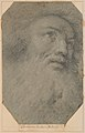 Head of a Bearded Man, Looking up to the Right MET DP208739.jpg