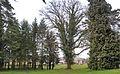 Heeschdref Park Eech04.jpg